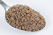 A spoonful of blond psyllium (flea seed)