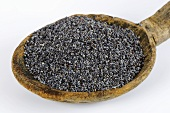 Opium poppy seeds on wooden spoon