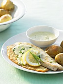 Tilapia fillets with tarragon & mustard sauce and potatoes