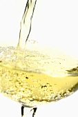 Pouring white wine (close-up)