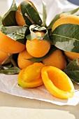Thai gandarias (plum mangos)