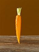 A carrot