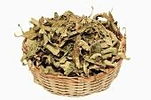 Dried verbena leaves in basket