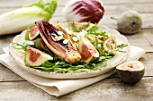 Grilled chicory with figs on rocket