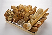 Assorted bread rolls and pretzels on tray