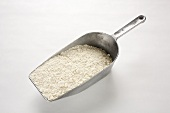 Flour in a flour scoop