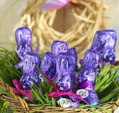 Purple chocolate bunnies in Easter nest