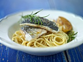 Fried sea bass on spaghetti with rosemary