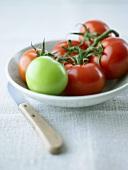 Fünf reife und eine unreife Tomate