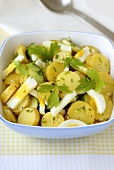Potato salad with cucumber, egg and parsley