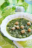 Herb soup with croutons for Easter