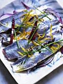 Roh marinierte Sardinen auf roten Zwiebeln