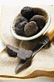 Black truffles (Chinese truffles) in dish on jute sack