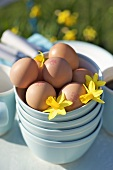 Fresh eggs in stacked bowls