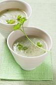 Cream of kohlrabi soup
