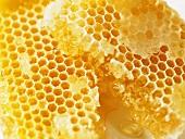Honeycomb (close-up)