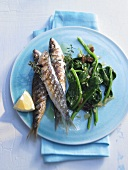 Sardines cooked in grill frying pan with spinach and lemon