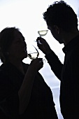 Wine tasting (Tasting vin blanc de Loire)