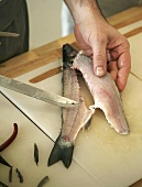 Cutting up a fish