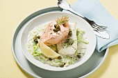 Salmon and ling on cabbage