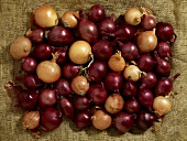 Red and brown onions on jute (overhead view)