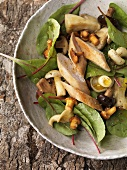 Autumn mushroom salad with rabbit