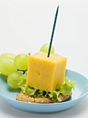 Cheese on cocktail stick with grapes