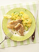 Fried fish fillets with potato salad (overhead view)