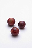 Three Camu Camu fruits (Fruit very rich in vitamin C, Peru)