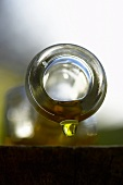 Olive oil dripping out of bottle