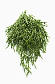 A heap of samphire