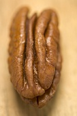 One pecan (close-up)