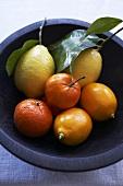 Citrus fruit in a bowl