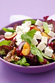 Lollo rosso with plums, goat's cheese and walnuts