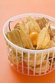 Physalis in a plastic basket