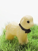 White chocolate Easter lamb in grass