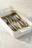 Sardellen mit Salz in Olivenöl eingelegt