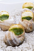 Stuffed snails on a bed of salt