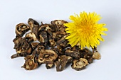 Roasted dandelion root with flower