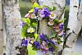 Wreath of violets, violet leaves and daisies