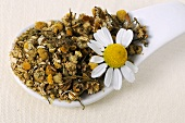 Dried chamomile flowers on a spoon