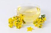 St. John's wort tea and flowers