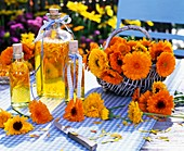 Marigolds in basket and bottles of marigold oil