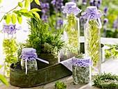 Various herb oils and herb salts