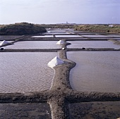 Salt pans in Brittany