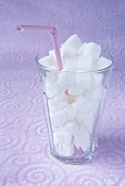 Sugar cubes and drinking straw in a glass