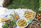 Picnic with chicken, vegetables, pasta salad, baked goods