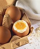 Boiled egg in an egg box