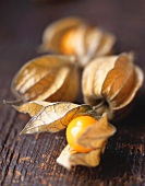 Four Cape gooseberries (Physalis)