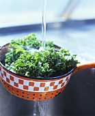 Washing kale in a strainer